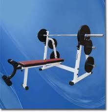Weights: An EProfessional Fitness Equipmentssential Element of