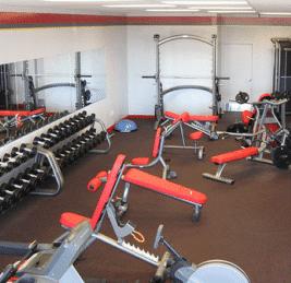 HOIST HF-4664 Ab/Back Roman Hyper Free Weight Strength Training System
