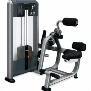 Precor DSL0313 Back Extension