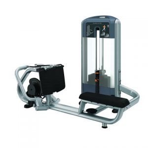 Precor DSL0324 Diverging Low Row